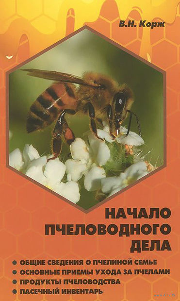 Начало пчеловодного дела — фото, картинка