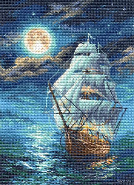 """Канва с нанесенным рисунком """"Ночной морской пейзаж"""""""