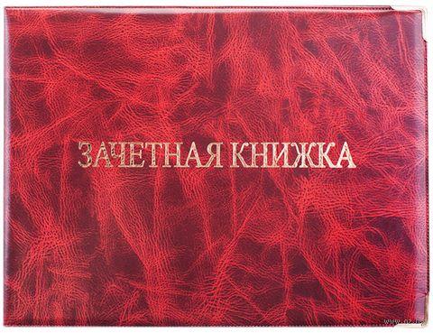 Обложка на зачётную книжку (арт. Cd-ZK-1_779) — фото, картинка