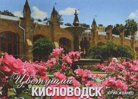 Цветущий Кисловодск. Фотоальбом — фото, картинка