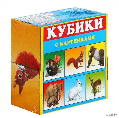 """Кубики с картинками """"Животные"""" (4 шт)"""