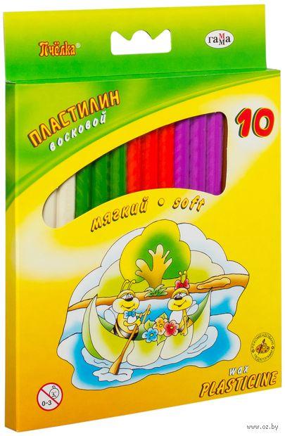 """Пластилин восковой """"Пчелка"""" (10 цветов) — фото, картинка"""