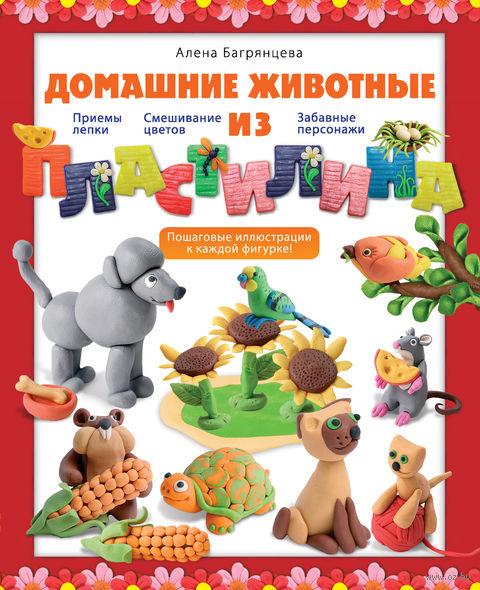 Домашние животные из пластилина. Алена Багрянцева