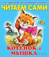 Котёнок и мышка — фото, картинка
