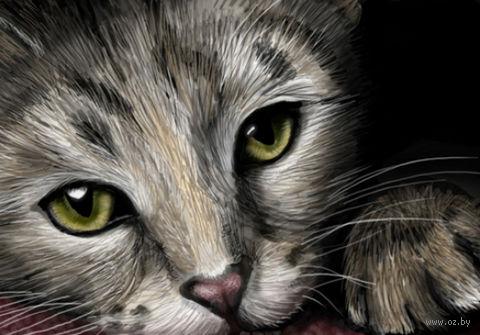 """Алмазная вышивка-мозаика """"Кошачий портрет"""" (500х350 мм) — фото, картинка"""