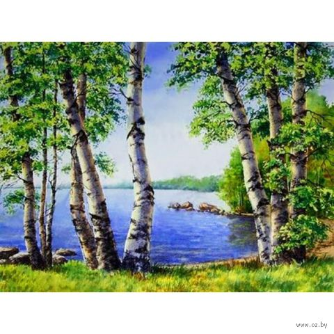 "Алмазная вышивка-мозаика ""Берёзы у озера"" (400х300 мм) — фото, картинка"
