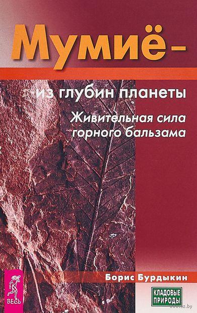 Мумие - из глубин планеты. Живительная сила горного бальзама — фото, картинка